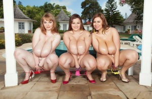 Big tits models Micky Bells  Terri Jane get totally naked along with a gf