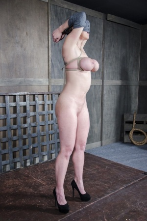 Blondesubmissive Dee Williams has her tits cinched tight with rope while bound 99746091