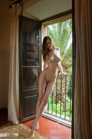 Slim model Anna-Leah poses without any clothes on inside open backdoor 84268553