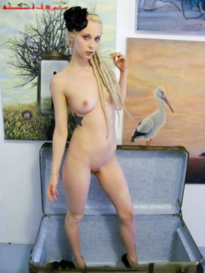 Blonde girl Eidolona pops out of a trunk before removing lingerie to pose nude 33425897
