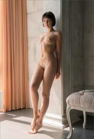 Brunette glamour model hits upon great poses after getting totally naked