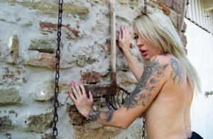 Tattooed blonde Evi Sky bares her fake tits in an expansive backyard 74465523