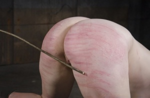 Restrained white girl Harley Ace is subjected to painful abuse in a dungeon