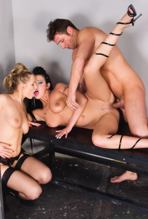 Top pornstars gets fucked in filthy assholes during an anal sex demonstration 55817080