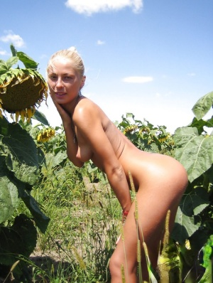 Homemade posing scene in a sunflower field with a hot blondie