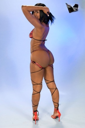 Oiled up ebony babe Kiki Carter shows her magnificent oiled ass and toys cunt